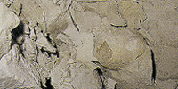 What is Bentonite?
