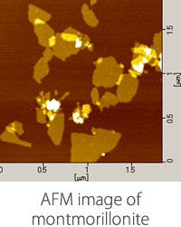 AFM image of montmorillonite